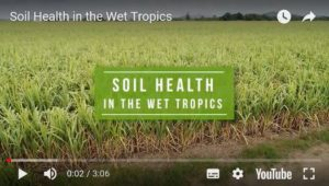 soil health in the wet tropics